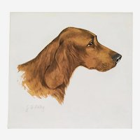 English Setter Dog Portrait, Engraving by French Painter Georges Frédéric Rötig (1873-1961)