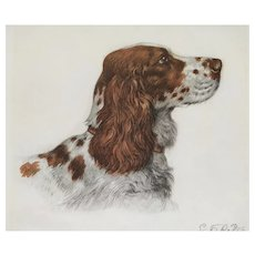 Brown English Setter Dog Portrait, Engraving by French Painter Georges Frédéric Rötig (1873-1961)