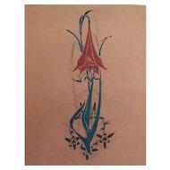 1900 - Botanical Flower Gouache and Pencil Painting, Art Nouveau Style