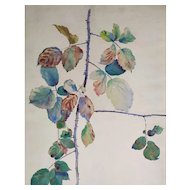 1900 - Rose Flower Watercolor Painting, Still Life subject signed by French Artist
