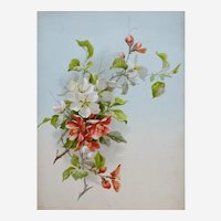 Botanical Chromolithograph Print of Red Flowers entitled Pyrus Communis and Prunus Armeniaca, 1920s