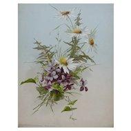 French Botanical Chromolithograph Print of Violet Flower entitled Chrysanthemum Viola 1920s