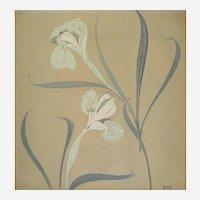 Art Nouveau Irises Gouache and pencil Still Life Flowers