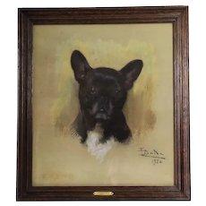 Portrait Of The Dog Bulldog Pastel By Enrique Dorda