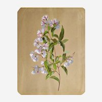 Antique Still Life Flower Painting Gouache Flowers Victorian style 19th c