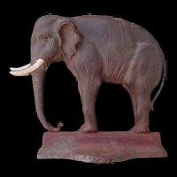 Rare Antique Bradley and Hubbard Cast Iron Elephant Door Stop