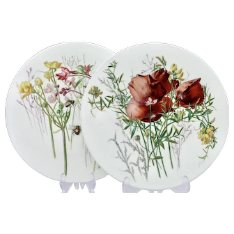 Pair of Brown-Westhead, Moore wild flower dessert plates (A) - c.1876
