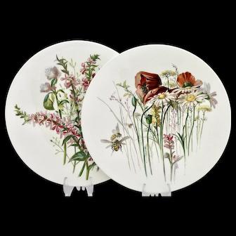 Pair of Brown-Westhead, Moore wild flower dessert plates (B) - c.1876