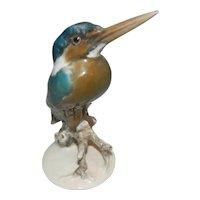 Incredible Rosenthal Hamdgemalt Kingfisher Bird Figurine