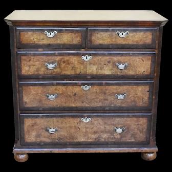 19th Century English George III Burr Walnut Chest of Drawers