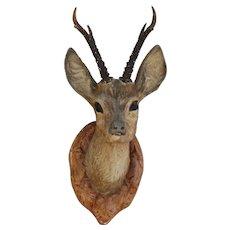 "Vintage ""FAUX TAXIDERMY"" Deer Head Decorative Wall Plaque  C1950"