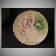 Julius H. Brauer Studio Hand Painted Cabinet Plate w/ Pink Poppy Decoration