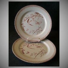 """Set of 2 - T & R Boote Aesthetic Movement Brown Transfer-ware """"Summer Time"""" Pattern Luncheon Plates"""