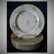 "Set of 6 Theodore Haviland, New York, ""Apple Blossom"" Pattern 7 1/2"" Salad/Dessert Plates"