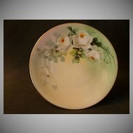 White's Art Company Hand Painted Cabinet Plate w/White Roses Motif