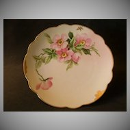 Pickard China Hand Painted Cabinet Plate w/Pink Wild Roses Motif