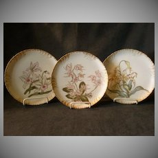 Set of 3 CFH/GDM Hand-Painted Cabinet Plates with Orchid Floral Motif