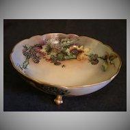 A Klingenberg & C Dwenger Porcelain Hand Painted Footed Bowl w/Blackberries & Floral Motif