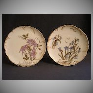 Pair of Haviland & Co. Limoges Hand Painted Cabinet Plates w/Floral Motifs