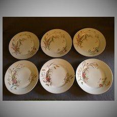 Set of 6 Porcelain Salad/Dessert Plates w/Variety of Wildflower Transfers