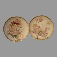 Pair of Haviland & Co., Limoges Hand-Painted Cabinet Plates w/Floral & Gold Motifs