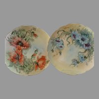 Pair of Haviland & Co., Limoges Hand-Painted Cabinet Plates w/Floral Motifs