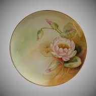D'Arcy Studio Hand Painted Cabinet Plate w/Pink Waterlily Decoration