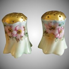 German Porcelain Hand Painted Salt & Pepper Set w/Wild Rose Floral Motif