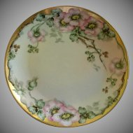 IT UNO Favorite Bavaria Hand Painted Cabinet Plate w/PInk Wild Roses Motif