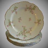 "Set of 4 Charles Haviland & Co., Limoges ""Wild Rose Motif"" Luncheon Plates, Schleiger 29A, Blank 2"
