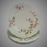 CFH/GDM Limoges Set of 4 Dinner Plates w/Passion Flower Blossoms & Vines Motif