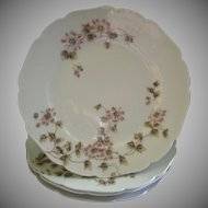 CFH/GDM Limoges Set of 4 Salad/Dessert Plates w/Passion Flower Blossoms & Vines Motif