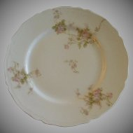 PH Leonard, Vienna, Austria, Porcelain Set of 8 Salad/Dessert Plates w/Pink & White Rose Motif