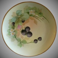 Pickard Studio Hand Painted Cabinet Plate w/Blackberry Floral & Fruit  Motif