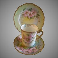 T&V Limoges Hand Painted Trio w/Pink Wild Roses Motif