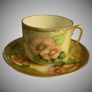 O & E G Austria Hand Painted Cup & Saucer w/Wild Pink Roses Motif