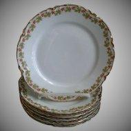 "Set of 6 Haviland & Co. Limoges ""Red Flowers & Green Leaves"" Pattern Bread & Butter Plates - Ranson w/Gold Blank #1"