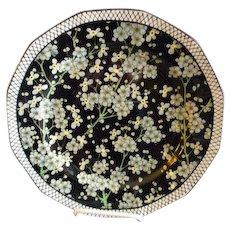 "Royal Doulton Transfer ""Floral"" Series Ware Plate - Prunus Pattern D3832"
