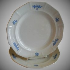 "Pair of ""Chelsea Grape"" Pattern Ironstone Dinner Plates"