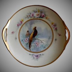 """Pickard Studio Hand Painted """"Golden Pheasant"""" Pattern Handled Cake Plate -  Signed E Challinor"""