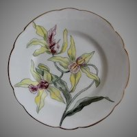 Charles Haviland & Co. Hand Painted Cabinet Plate w/Orchid Blossoms Motif - Artist Signed