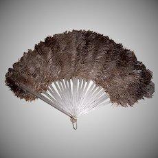 Antique Ostrich Feathers & Celluloid Fan