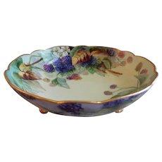 A. Klingenberg & C. Dwenger Porcelain Hand Painted Footed Bowl w/ Raspberry Motif