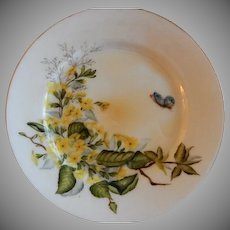 Charles F Haviland H.P. Floral & Butterfly Cabinet Plate, Artist Signed, 7 of 11