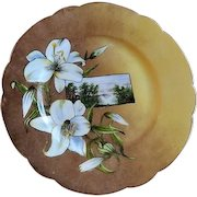 Charles Haviland Hand Painted Cabinet Plate w/Floral & Scenic Motif
