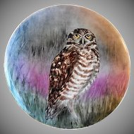 "Home Studio Hand Painted ""Burrowing Owl"" Plate"