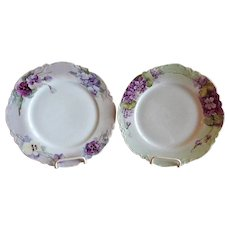 Pair of Haviland & Company Limoges Hand Painted Cabinet Plates w/Floral Motifs
