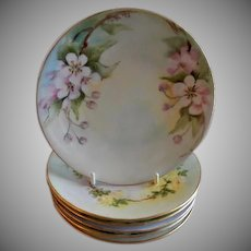 Set of 6 Bavaria Hand Painted Floral Motif Plates - Ella Watts, Mt Morris IL Artist - Early 1900's