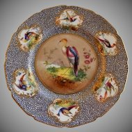 "Royal Doulton ""Bird of Paradise"" Motif Plate (2 of 6) - E Percy/Robert Allen"