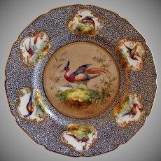 """Royal Doulton """"Bird of Paradise"""" Motif Plate (3 of 6) - E Percy/Robert Allen"""